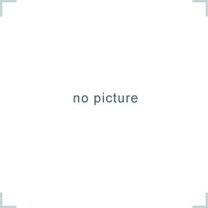 Baumwolljersey Druck Flamingos Premium Collectionvon Textil Rammelkamp